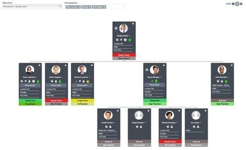 succession planning example
